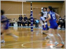 龍谷大学女子バレーボール部(体育会系応援部)